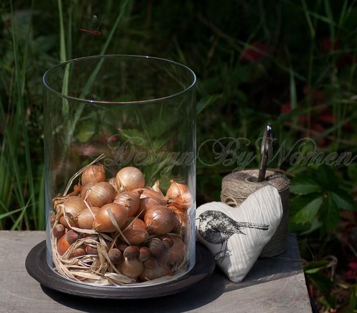 Archiwa Bomboniera: Klosz/pojemnik Decor Home Wypełniony Cebulą I Orzechami
