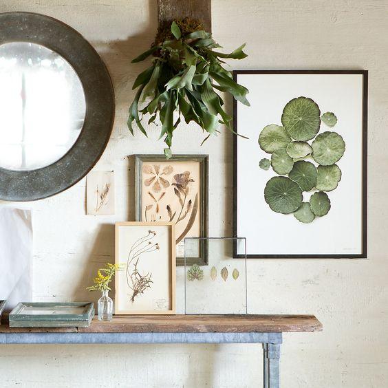 ramki obrazki z roślinami